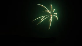 Green Firework Royalty Free Stock Photo