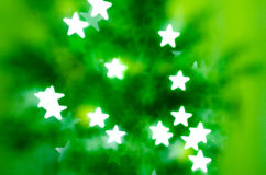 Green firtree Stock Photography