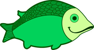 Green fish. On white background Stock Images