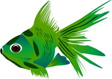Green fish Royalty Free Stock Image