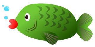Green fish - carp on white background. Illustration of green fish - carp on white background Royalty Free Stock Photo