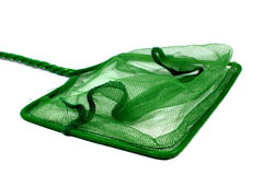 Green Fish Net. Green fish net used for aquariums at home Royalty Free Stock Image