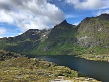 Green Fjords in the end of the Lofoten archipelago in Norway stock images