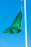 Green Flag beach portrait. Green flag portrait in the beach Royalty Free Stock Images