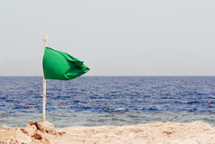 Green flag on the beach. suny day vacation seascape.  Stock Photos