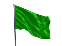 Green flag. 3d render Stock Image