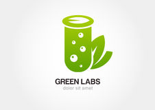 Green flask with leaves, lab icon. Vector logo design template Stock Photo