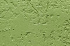 Green flat rough painted wall. Seamless texture. Used as a background. stock photos