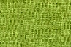 Green flax Stock Image