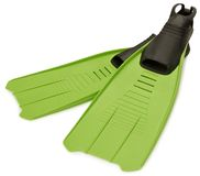 Green Flippers stock image