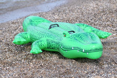 Green floater crocodile. In the water Royalty Free Stock Photography