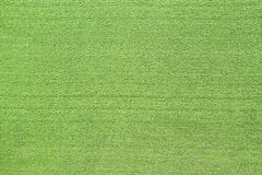Green floor Stock Photography