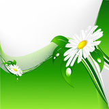 Green floral backdrop Royalty Free Stock Photo