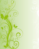 Green floral background Stock Photography