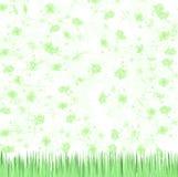 Green Floral Background. Illustration of a green floral background and grass vector illustration