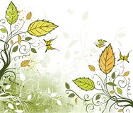 Green floral background. Floral design, butterfly, grunge background Stock Image