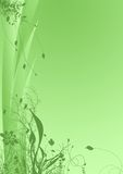 Green floral background. Illustration of green floral background Royalty Free Stock Photography