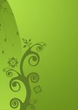 Green floral background. Illustration of green floral background Royalty Free Stock Images