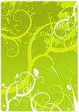 Green floral background. Grunge fresh green floral background , vector illustration royalty free illustration