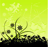 Green floral background. Abstract green and black floral background Stock Photography