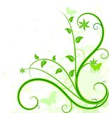 Green floral background. Stock Images