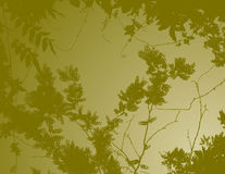 Green floral background. A green floral background with abstract design of tree branches Royalty Free Stock Photography