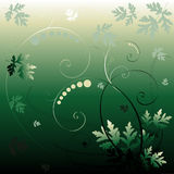 Green floral background. A greenish illustrated and artistic abstract background with a floral or vegetation theme stock illustration