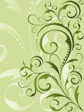 Green floral background. Beautiful green floral  background Royalty Free Stock Images