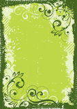 Green floral background. Close up of green floral background with border Stock Photos