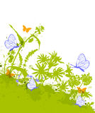 Green floral background with blue butterflies Royalty Free Stock Photography