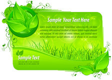 Green floral background with text. Vector illustration Royalty Free Stock Photo