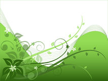 Green floral background, vector Stock Image