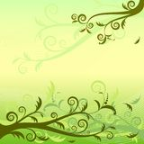 Green Floral Background (vector) Royalty Free Stock Photography