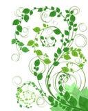 Green floral background. Vector illustration of a green floral background Royalty Free Stock Photo