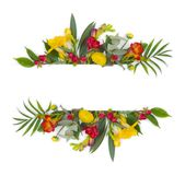 Green floral banner with multicolor flowers isolated on white background Stock Photo