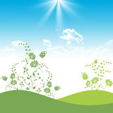 Green Floral and Blue Sky Stock Images