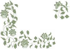 Green floral corner decoration on white Royalty Free Stock Photo