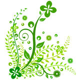 Green Floral design Royalty Free Stock Photo