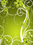 Green  floral design Royalty Free Stock Image