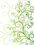 Green floral design. On whita background Royalty Free Stock Photos