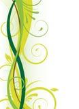 Green floral design Stock Photos