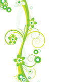 Green floral design Stock Photos