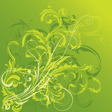 Green floral design Stock Image