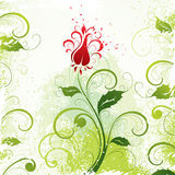 Green floral drawing  Royalty Free Stock Photography