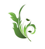 Green floral element Stock Photography