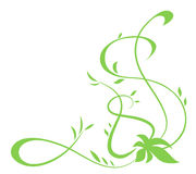 Green floral element for design Stock Photos