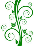 Green floral elements. Vector illustration of a green floral background Royalty Free Stock Image