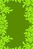 Green floral frame Stock Image