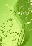 Green Floral-grunge illustration Stock Images