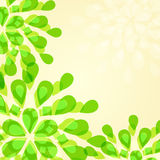 Green Floral Invintation Card Royalty Free Stock Photo